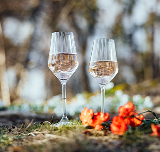 Lifestyle champagne glasses 4 pcs